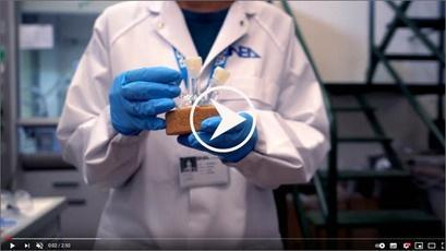 MILEDI laboratory - video